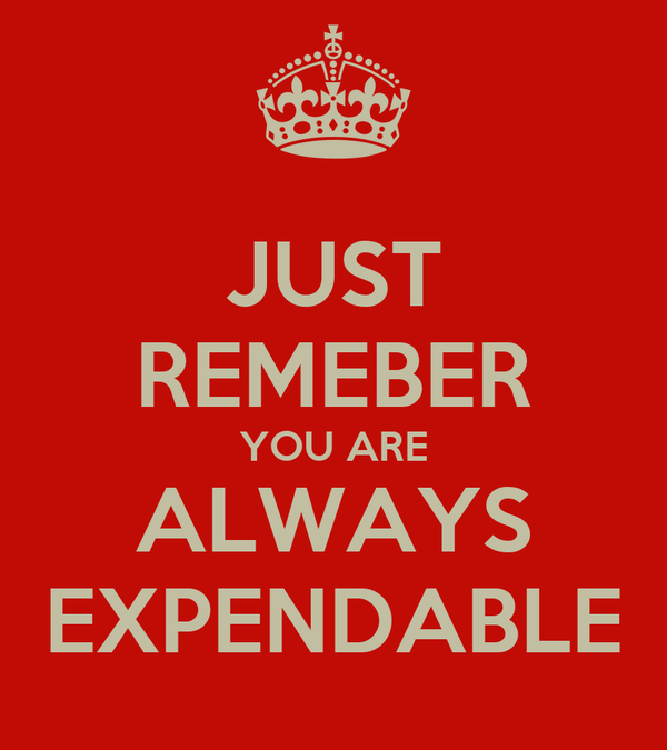 JUST REMEBER YOU ARE ALWAYS EXPENDABLE
