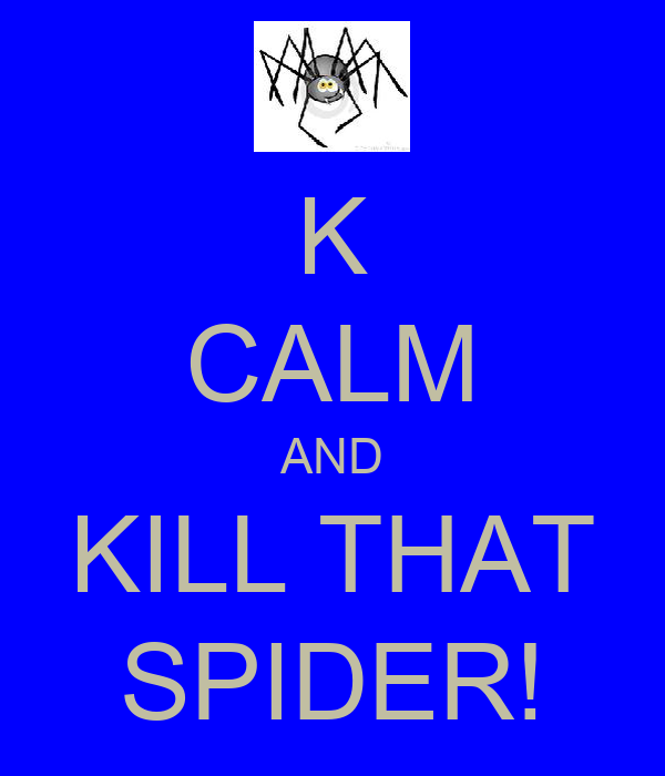 K CALM AND KILL THAT SPIDER!