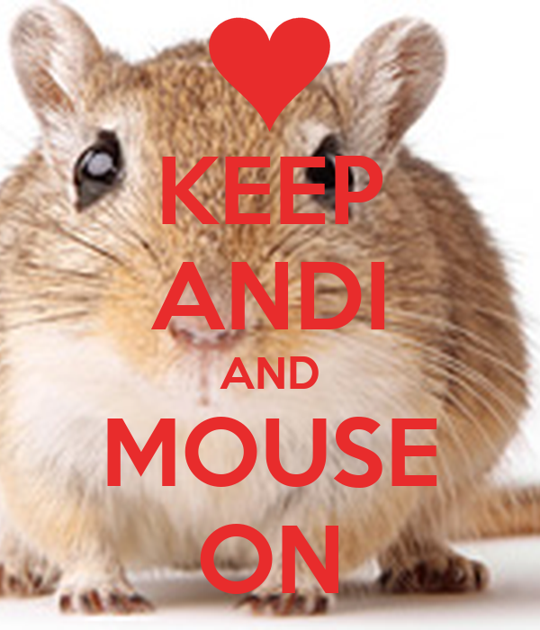 KEEP ANDI AND MOUSE ON