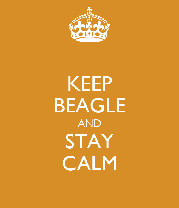KEEP BEAGLE AND STAY CALM