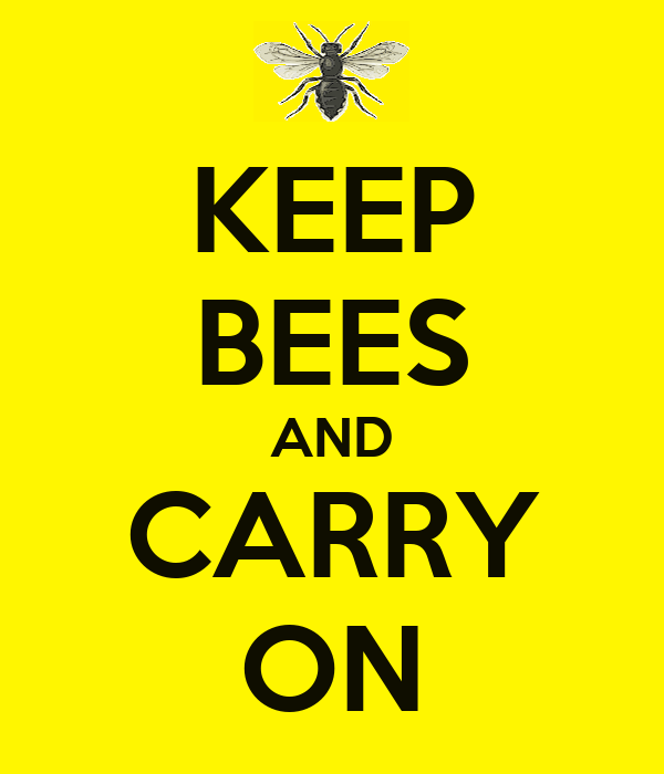 KEEP BEES AND CARRY ON