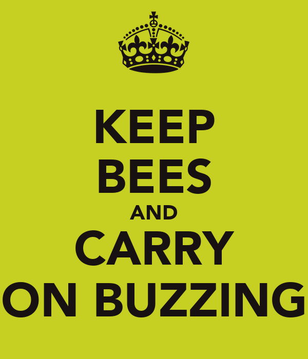 KEEP BEES AND CARRY ON BUZZING
