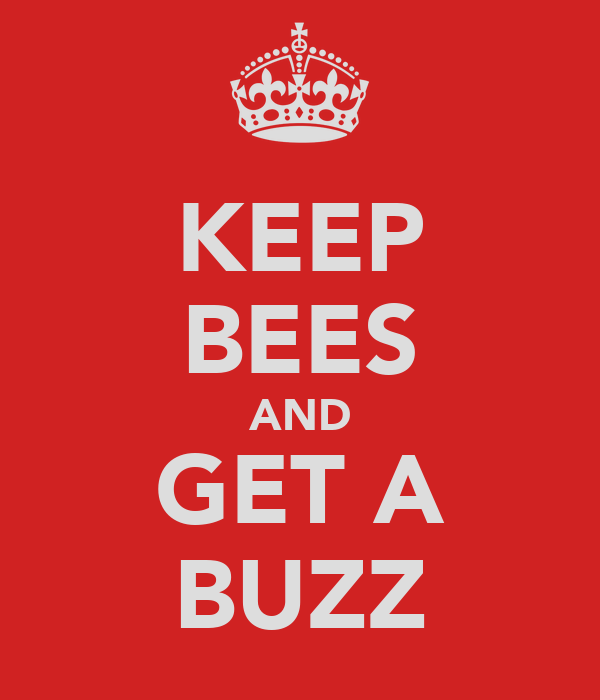 KEEP BEES AND GET A BUZZ