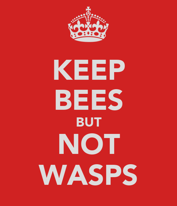 KEEP BEES BUT NOT WASPS