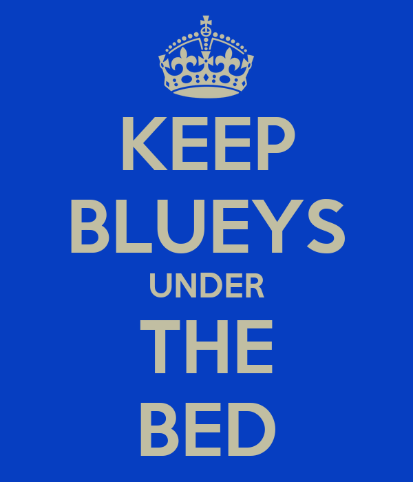 KEEP BLUEYS UNDER THE BED