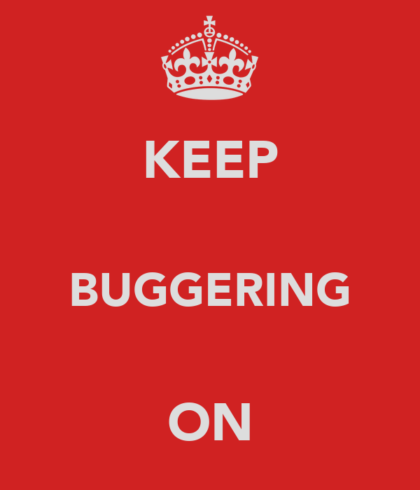 KEEP  BUGGERING  ON