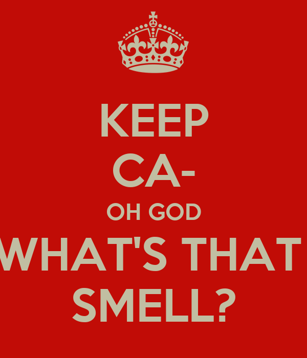 KEEP CA- OH GOD WHAT'S THAT  SMELL?