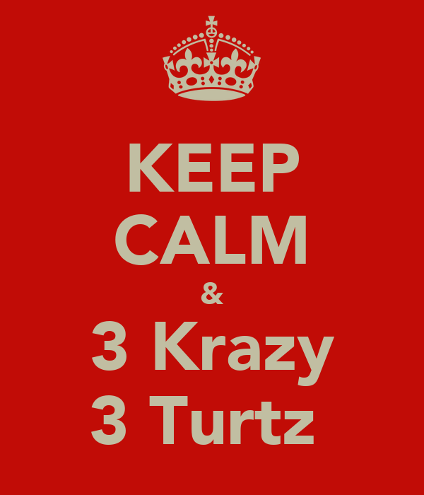 KEEP CALM & 3 Krazy 3 Turtz