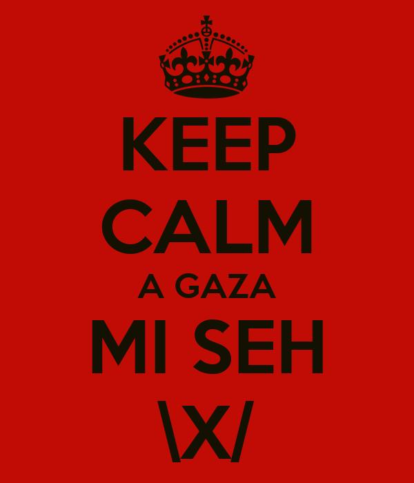 KEEP CALM A GAZA MI SEH \X/