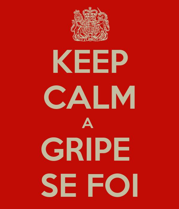 KEEP CALM A  GRIPE  SE FOI