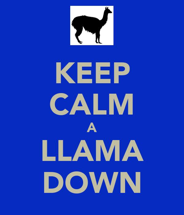 KEEP CALM A LLAMA DOWN