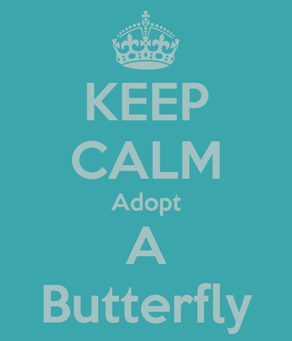 KEEP CALM Adopt A Butterfly