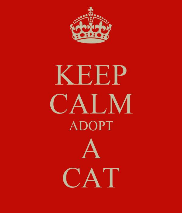 KEEP CALM ADOPT A CAT