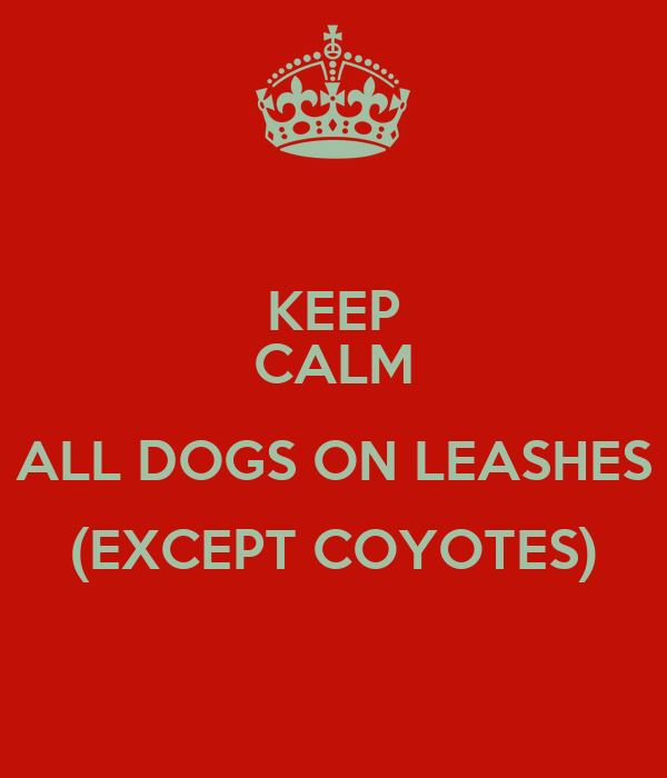 KEEP CALM ALL DOGS ON LEASHES (EXCEPT COYOTES)