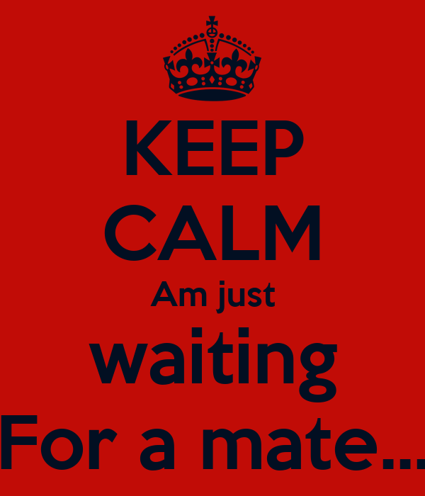 KEEP CALM Am just waiting For a mate...