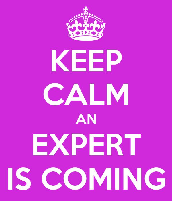 KEEP CALM AN EXPERT IS COMING
