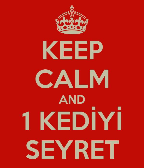 KEEP CALM AND 1 KEDİYİ SEYRET