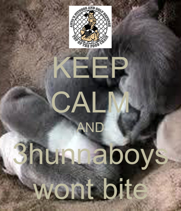 KEEP CALM AND 3hunnaboys wont bite