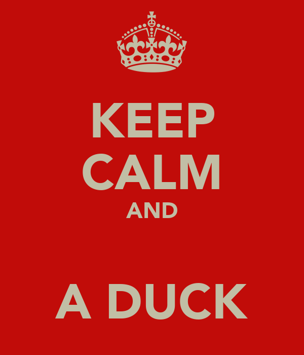 KEEP CALM AND  A DUCK