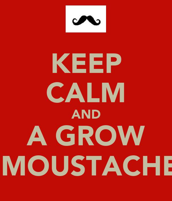 KEEP CALM AND A GROW  MOUSTACHE