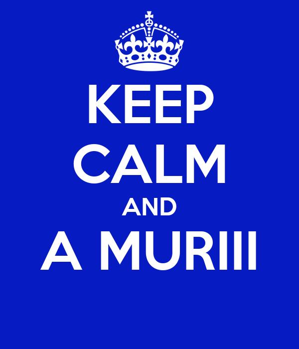 KEEP CALM AND A MURIII