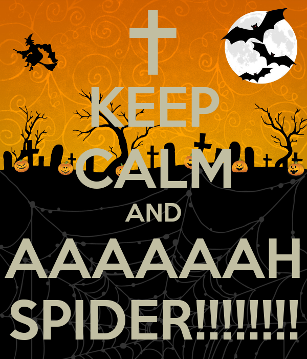 KEEP CALM AND AAAAAAH SPIDER!!!!!!!!