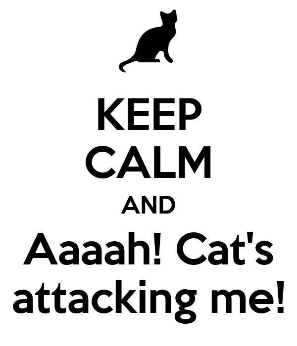 KEEP CALM AND Aaaah! Cat's attacking me!