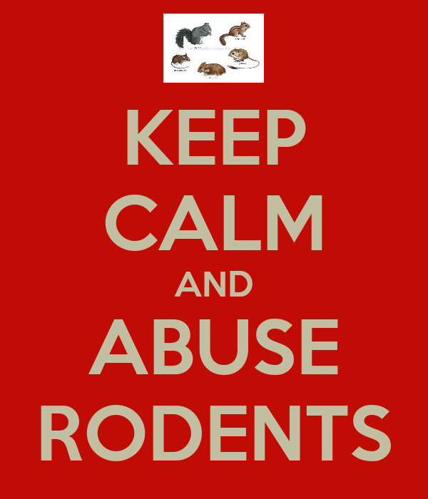 KEEP CALM AND ABUSE RODENTS