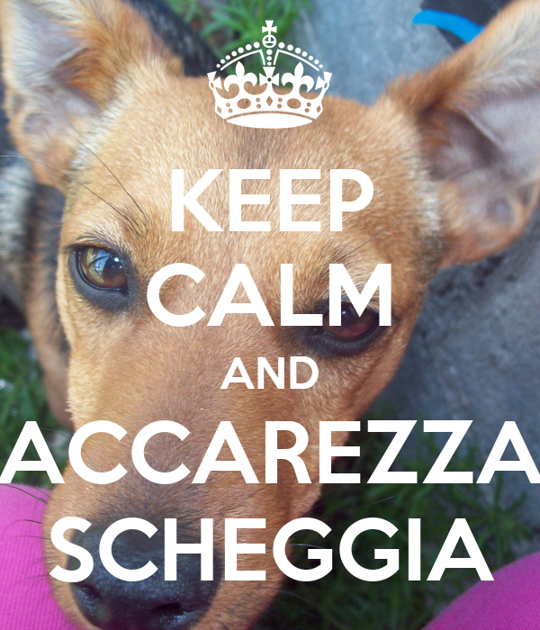 KEEP CALM AND ACCAREZZA SCHEGGIA