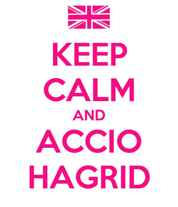 KEEP CALM AND ACCIO HAGRID