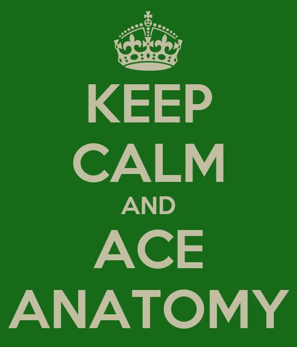 KEEP CALM AND ACE ANATOMY