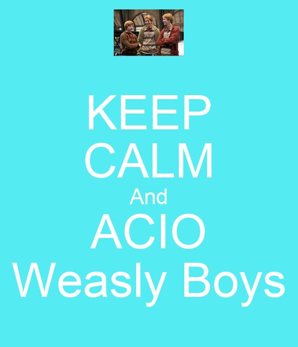 KEEP CALM And ACIO Weasly Boys
