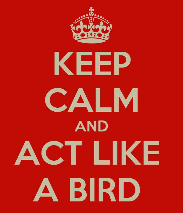 KEEP CALM AND ACT LIKE  A BIRD