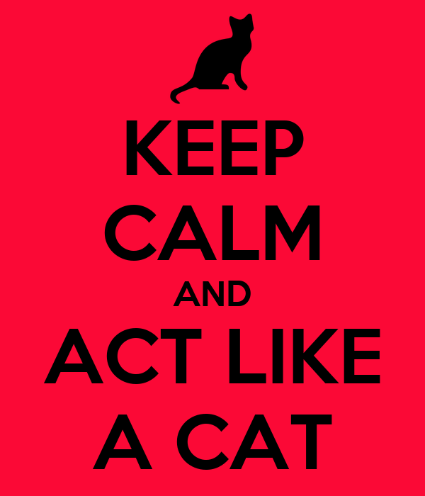 KEEP CALM AND ACT LIKE A CAT
