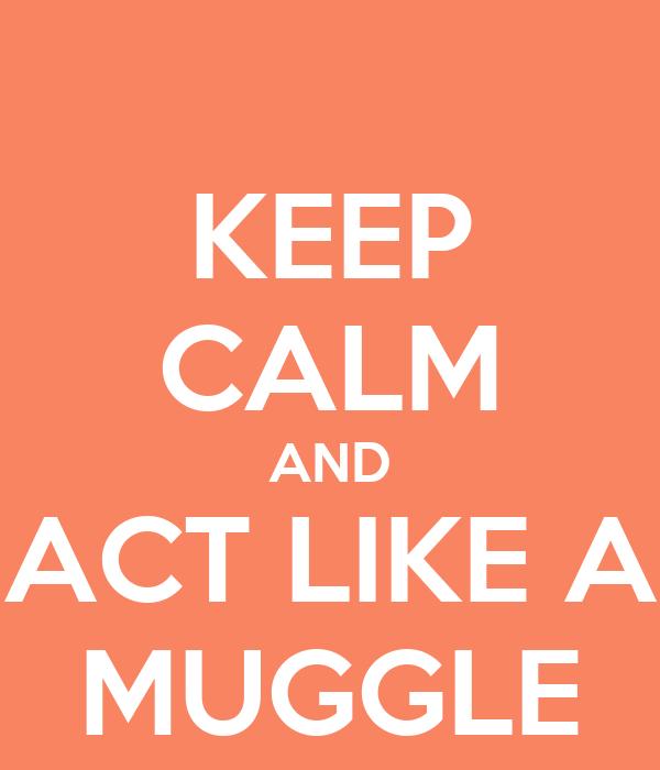 KEEP CALM AND ACT LIKE A MUGGLE