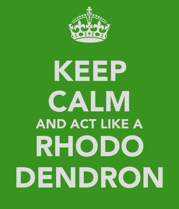 KEEP CALM AND ACT LIKE A RHODO DENDRON