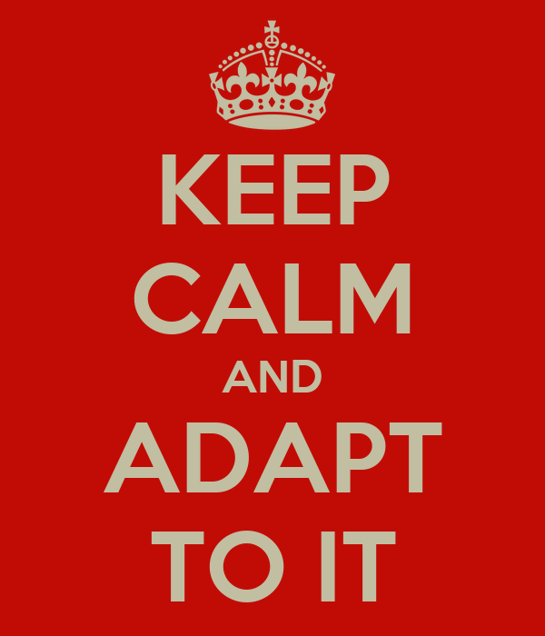 KEEP CALM AND ADAPT TO IT