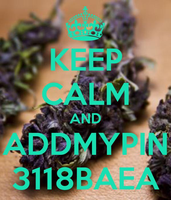 KEEP CALM AND ADDMYPIN 3118BAEA