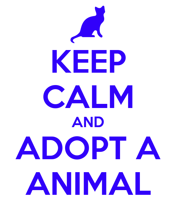 KEEP CALM AND ADOPT A ANIMAL