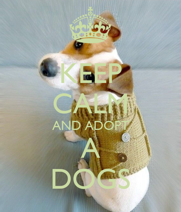 KEEP CALM AND ADOPT A DOGS