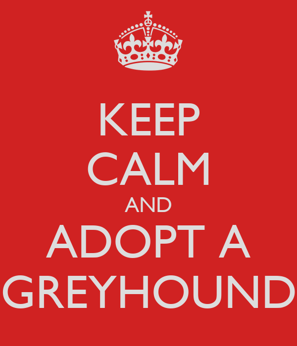 KEEP CALM AND ADOPT A GREYHOUND