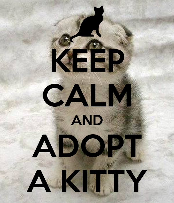 KEEP CALM AND ADOPT A KITTY