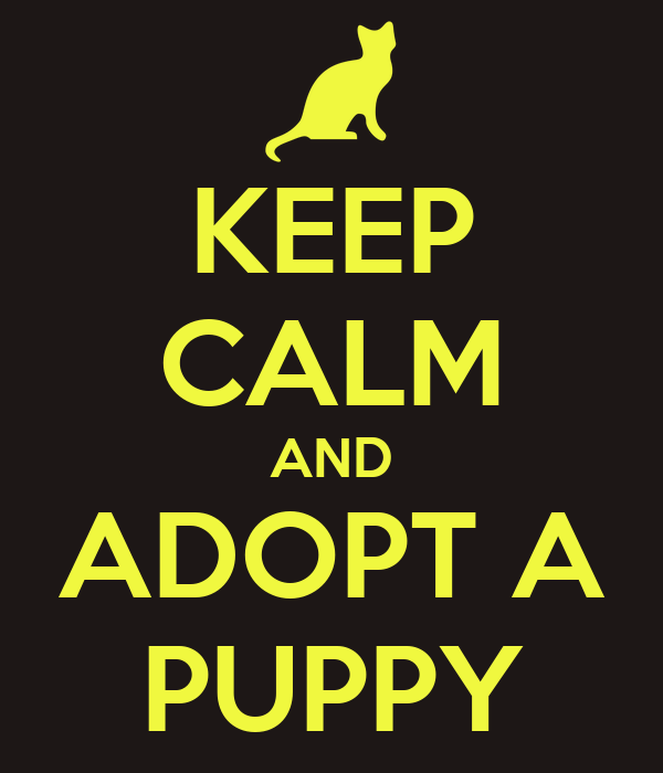 KEEP CALM AND ADOPT A PUPPY