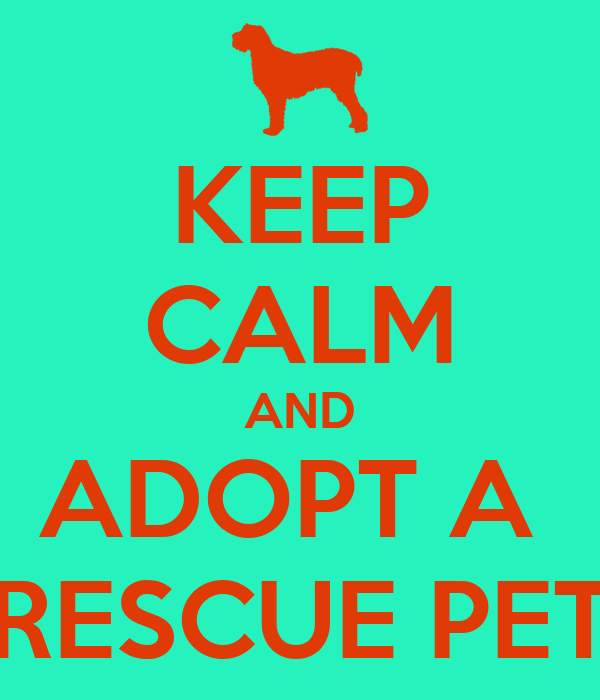 KEEP CALM AND ADOPT A  RESCUE PET
