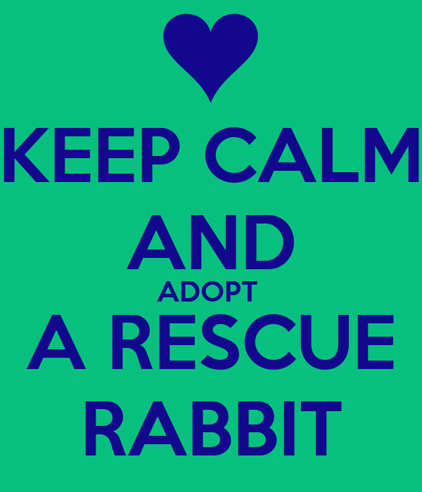 KEEP CALM AND ADOPT  A RESCUE RABBIT