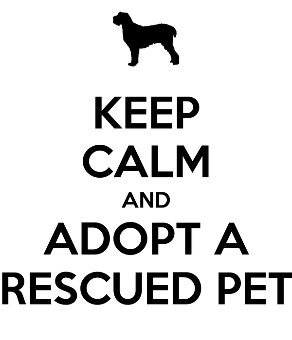 KEEP CALM AND ADOPT A RESCUED PET