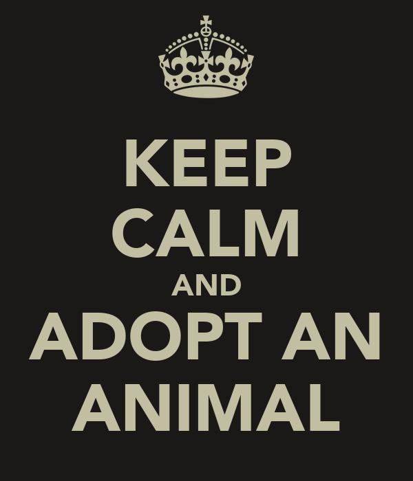 KEEP CALM AND ADOPT AN ANIMAL