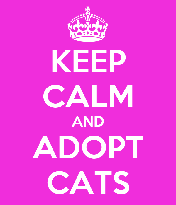 KEEP CALM AND ADOPT CATS