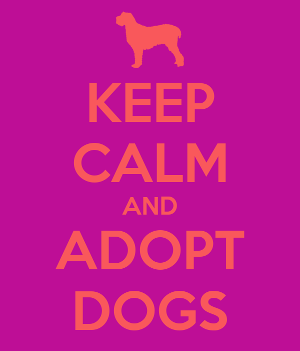 KEEP CALM AND ADOPT DOGS