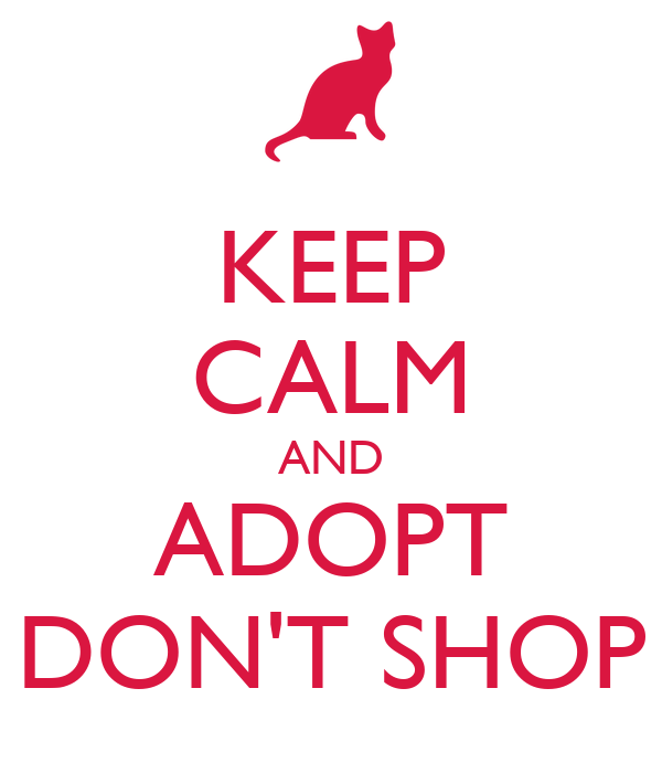 KEEP CALM AND ADOPT DON'T SHOP